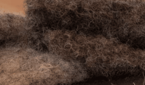 Naturauflage Rosshaar
